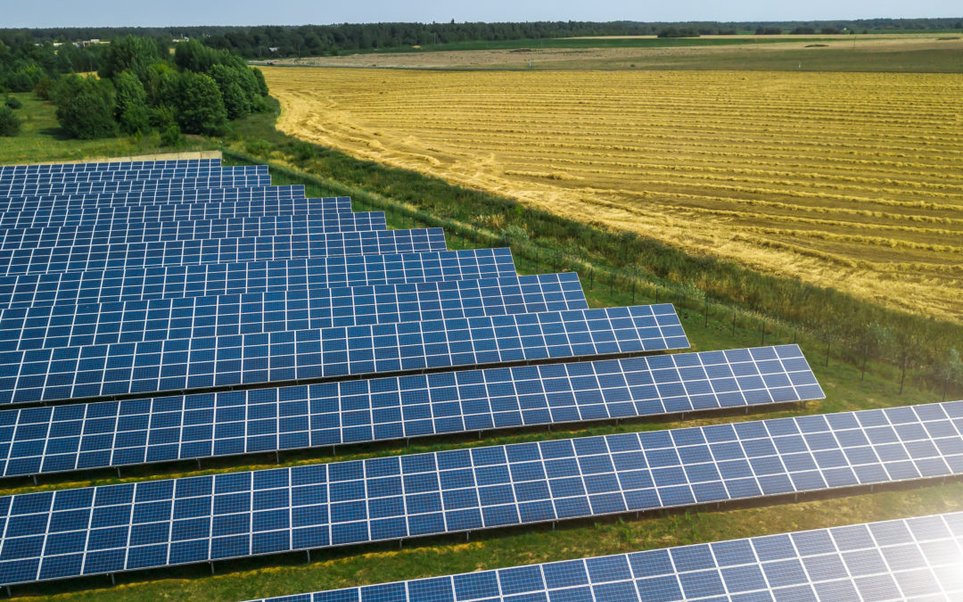 Beautifying Your Solar Farm — 5 Reasons to Choose Padmount Over Poles for Your Solar Farm Grid Tie
